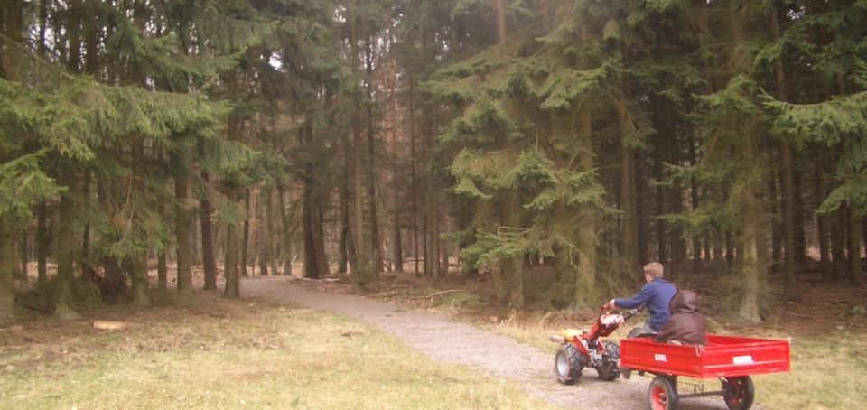 A48 Abfahrt Kaisersesch, links abbiegen, nächste Möglichkeit rechts Richtung Kloster Martental, T- Kreuzung links, hinter VW- Händler links in das Dorf Neuhof, nach 200m halblinks in den Wald einbiegen, der schlecht geteerten Straße für 800m folgen, Sie erreichen die Einfahrt des Jagdhaus Jettchen